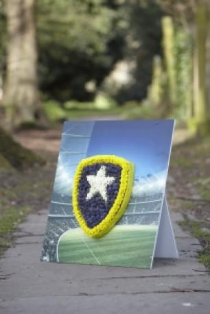 Badge 2 Shared Memory Tribute