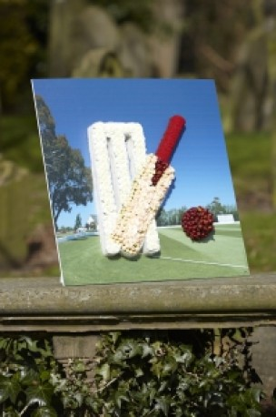 Cricket Set Shared Memory Tribute