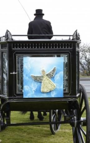 Angel Shared Memory Tribute