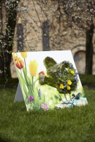 Gardening Shared Memory Tribute