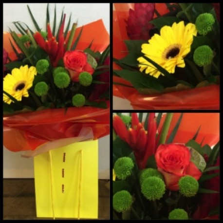 Heliconia red and yellow