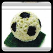 Floral Football